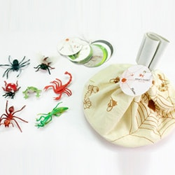 Flintobox Magical Insects - What's inside