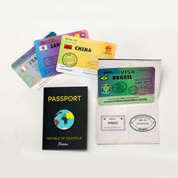 Flintobox World Traveller - Passport