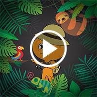 Magical Rainforest - Flintobox Theme