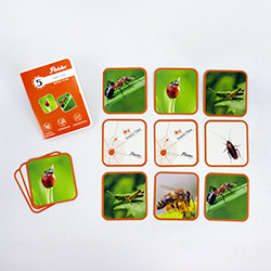 Flintobox Magical Insects -  Insect Tiles