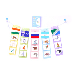 Flintobox World Traveller - Country Banner